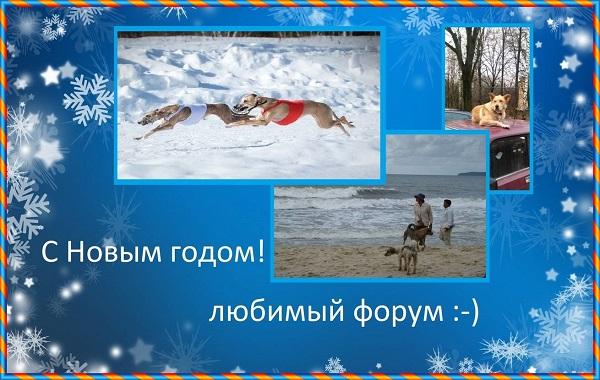 http://s7.uploads.ru/t/zv4J1.jpg
