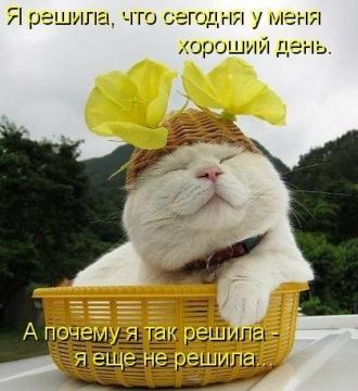 http://s7.uploads.ru/t4Kcg.jpg