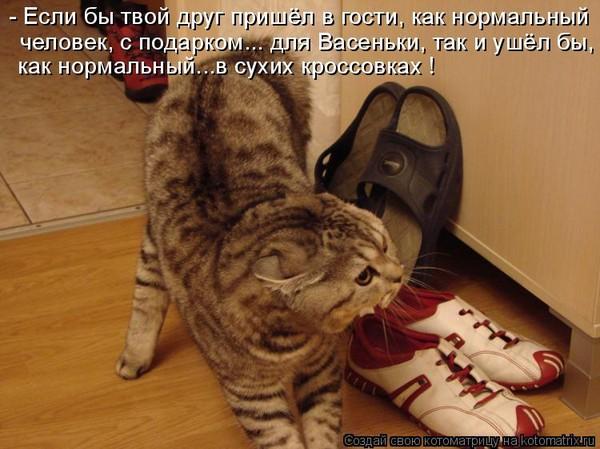 http://s7.uploads.ru/uCsnm.jpg