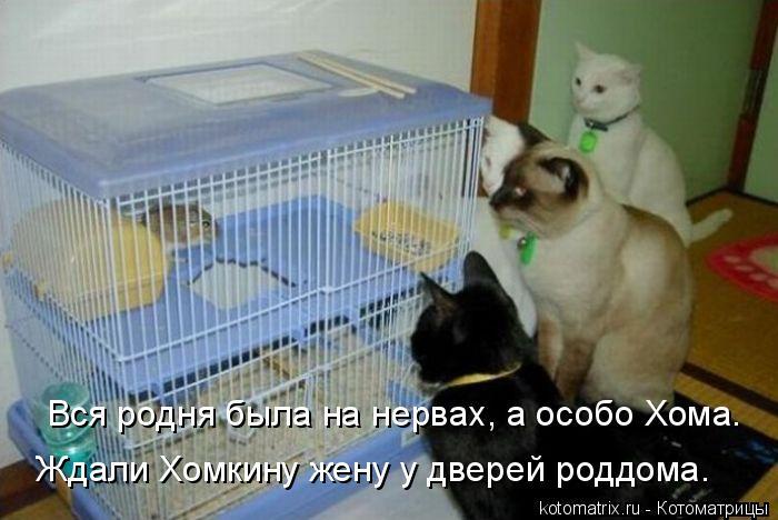 http://s7.uploads.ru/vFfro.jpg
