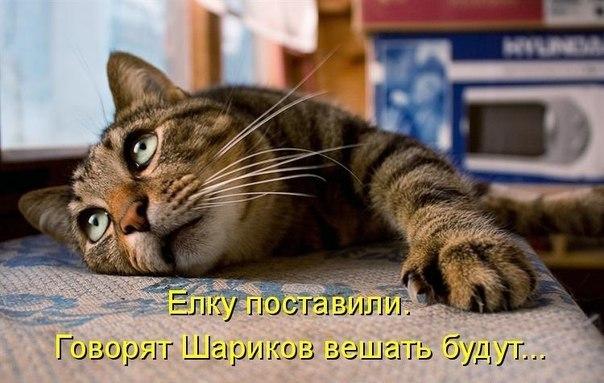 http://s7.uploads.ru/vVQ8d.jpg