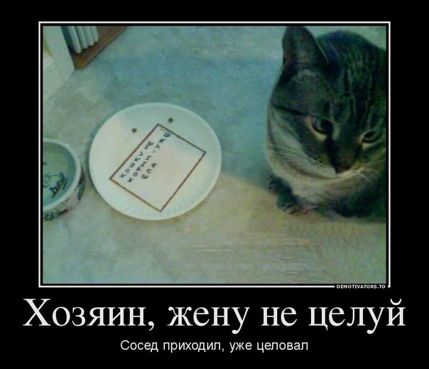 http://s7.uploads.ru/x5jmQ.jpg