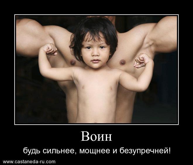http://s7.uploads.ru/xPMtS.jpg