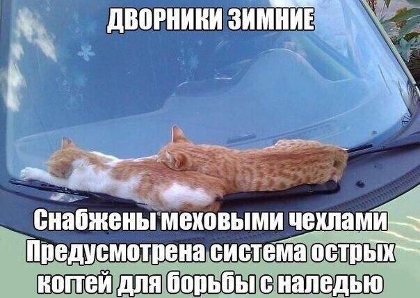 http://s7.uploads.ru/xY4OD.jpg