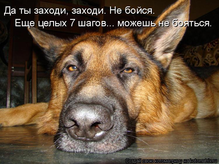 http://s7.uploads.ru/xh2PU.jpg