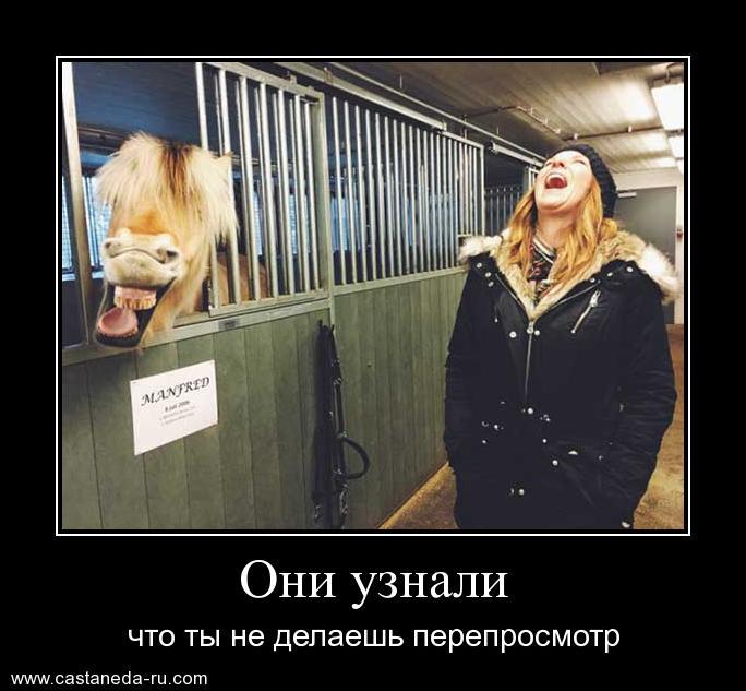 http://s7.uploads.ru/yZwL1.jpg