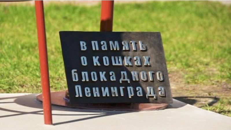 http://s7.uploads.ru/yiVoO.jpg