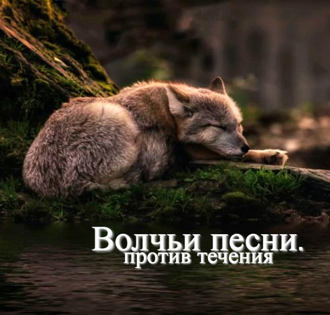 http://s7.uploads.ru/1WgCo.jpg