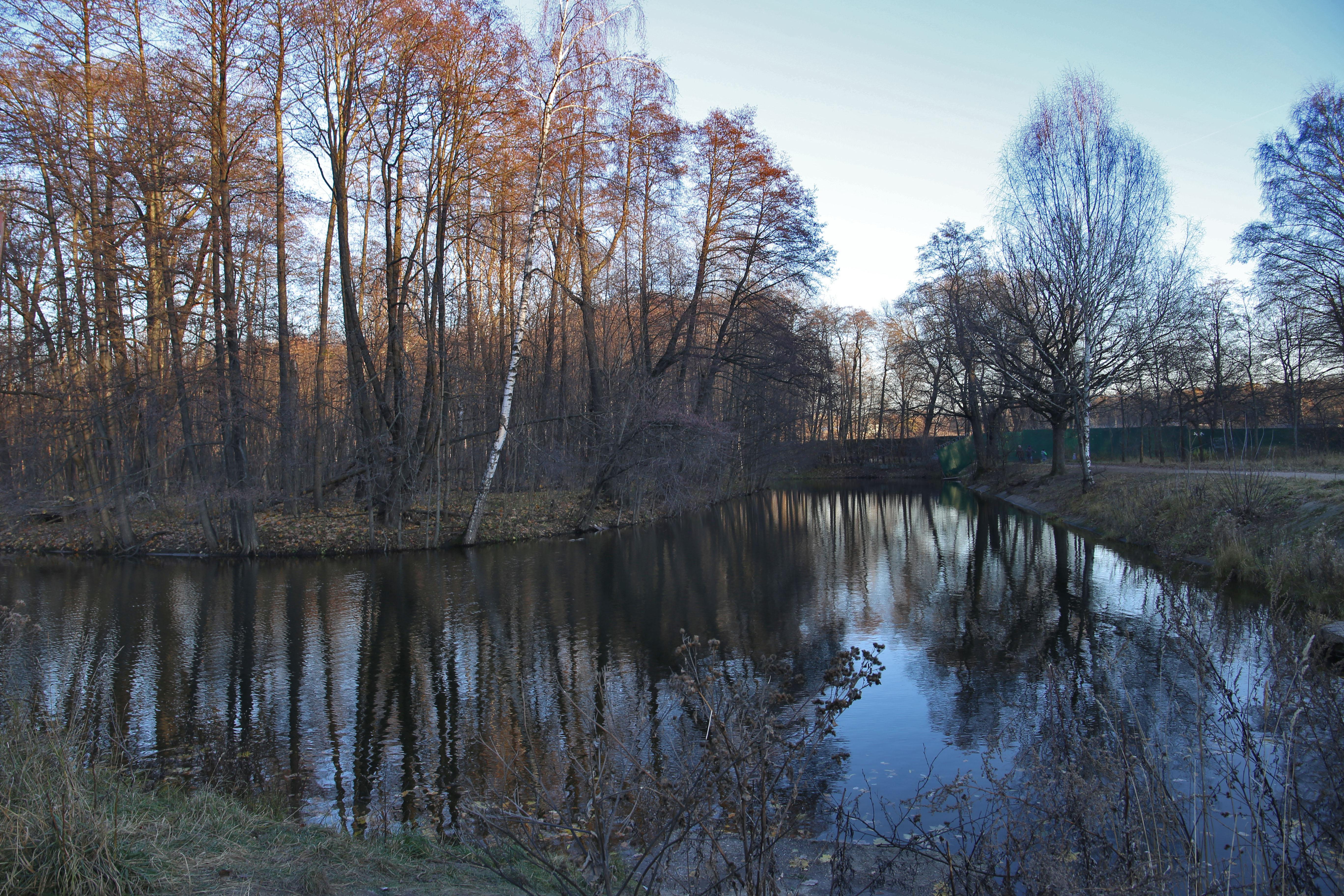 http://s7.uploads.ru/4QvFj.jpg