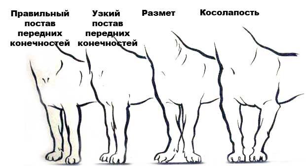 http://s7.uploads.ru/7b8iR.jpg