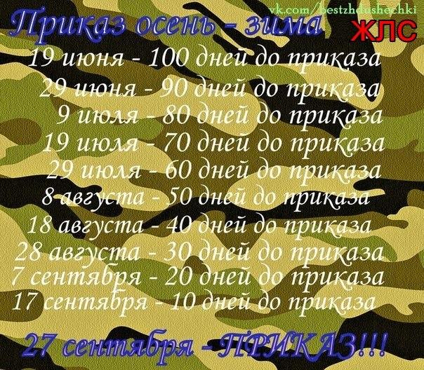 http://s7.uploads.ru/9p5gn.jpg