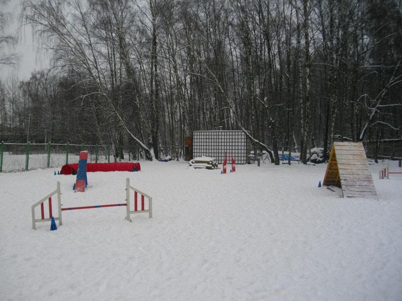http://s7.uploads.ru/GZiD7.jpg