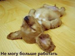 http://s7.uploads.ru/NqYX0.jpg