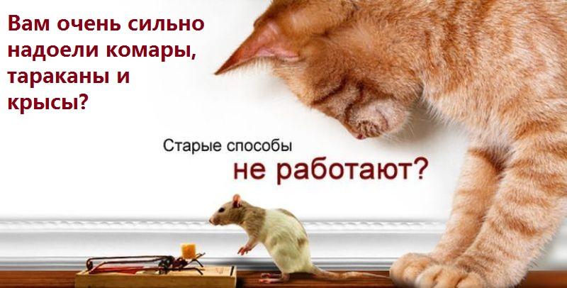 http://s7.uploads.ru/PuFcK.jpg