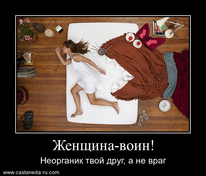 http://s7.uploads.ru/RSoPF.jpg