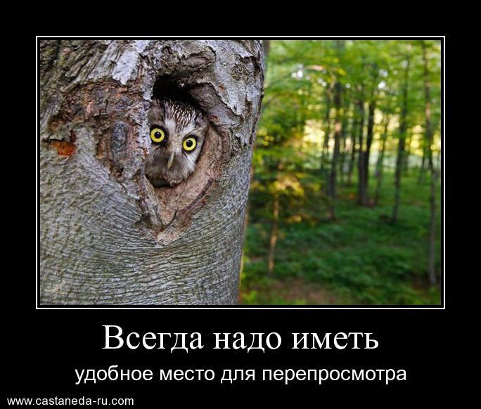 http://s7.uploads.ru/RxUkf.jpg