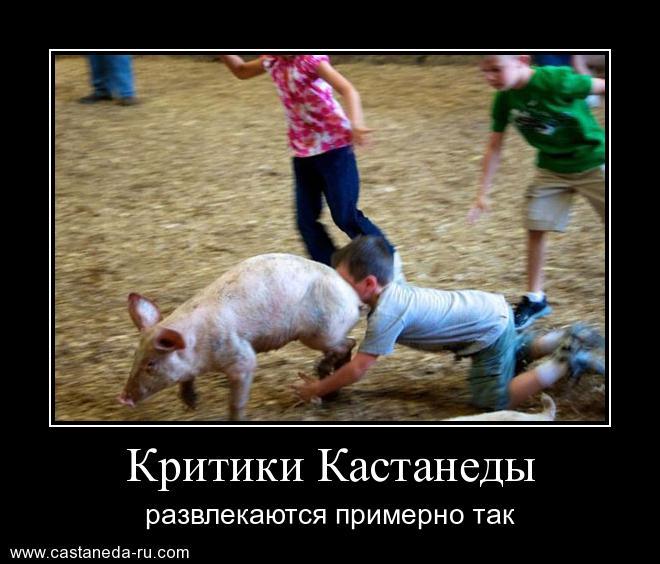 http://s7.uploads.ru/TktQN.jpg
