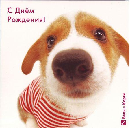 http://s7.uploads.ru/Vj4dY.jpg