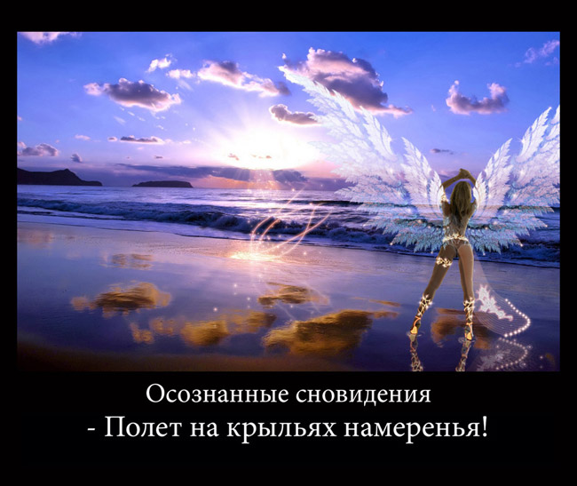 http://s7.uploads.ru/WIPtp.jpg