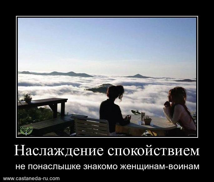 http://s7.uploads.ru/Z1ASM.jpg