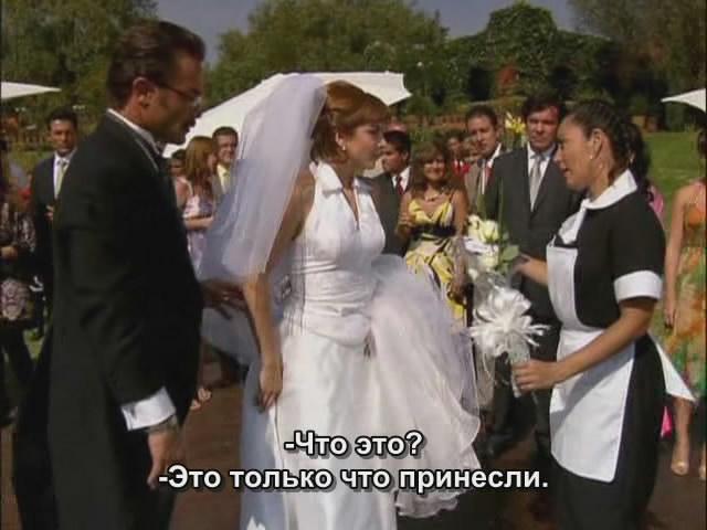 http://s7.uploads.ru/dAhuC.jpg