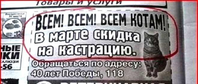 http://s7.uploads.ru/fJAZh.jpg