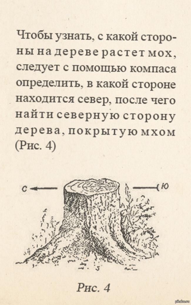 http://s7.uploads.ru/hAlfz.jpg