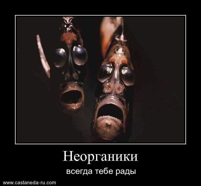 http://s7.uploads.ru/hrxAd.jpg