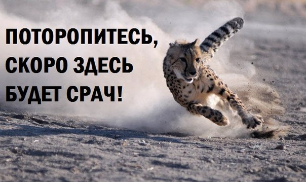 http://s7.uploads.ru/q7zuV.jpg
