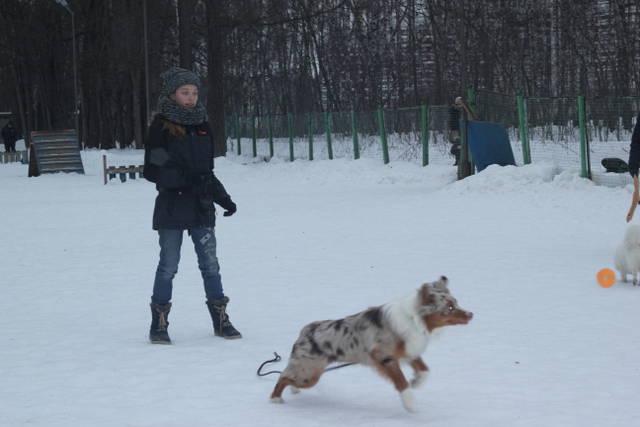 http://s7.uploads.ru/rZNQi.jpg