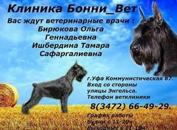 http://s7.uploads.ru/t/38hfK.jpg