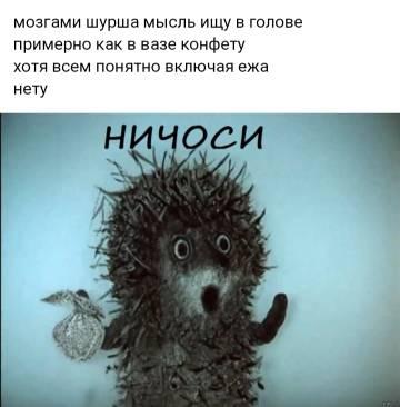 http://s7.uploads.ru/t/3yh2o.jpg