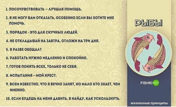 http://s7.uploads.ru/t/51vE8.png