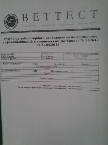 http://s7.uploads.ru/t/6JEoO.jpg