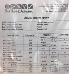 http://s7.uploads.ru/t/EJtQY.jpg