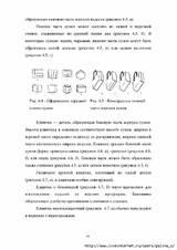 http://s7.uploads.ru/t/GVf6q.jpg