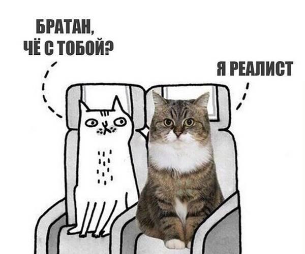 http://s7.uploads.ru/t/Pylj9.jpg