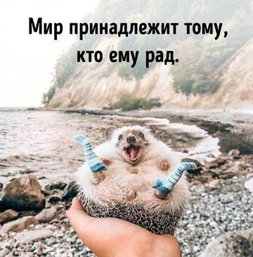 http://s7.uploads.ru/t/QOETt.jpg