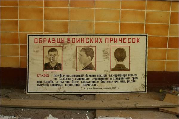 http://s7.uploads.ru/t/QUdog.jpg