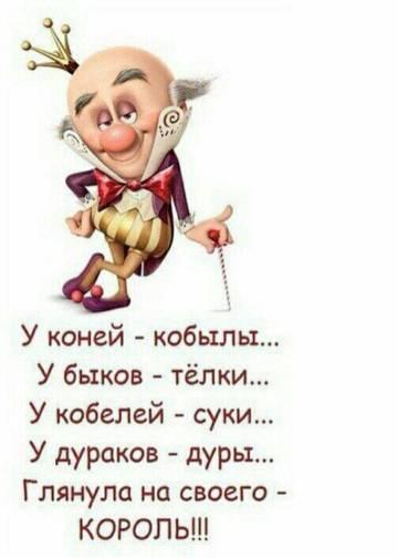 http://s7.uploads.ru/t/T0bZi.jpg