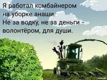 http://s7.uploads.ru/t/T7Dkr.jpg