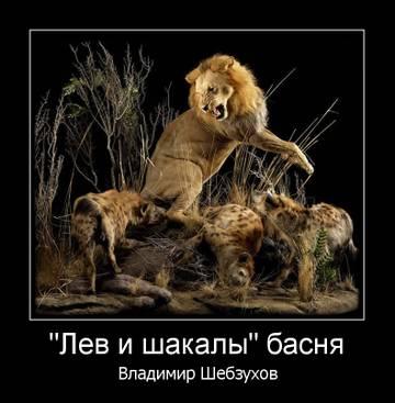http://s7.uploads.ru/t/UIyuv.jpg