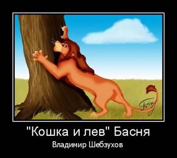 http://s7.uploads.ru/t/XNg6w.jpg