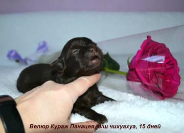 http://s7.uploads.ru/t/bkVzg.jpg