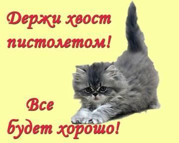 http://s7.uploads.ru/t/ekfzG.jpg