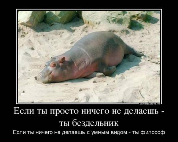 http://s7.uploads.ru/t/fOosd.jpg