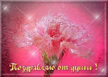 http://s7.uploads.ru/t/fgYxu.jpg