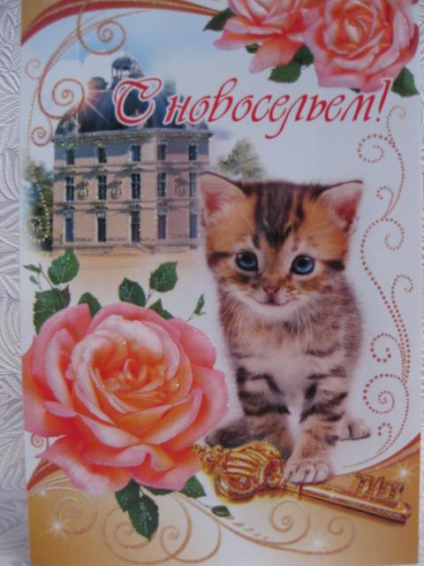 http://s7.uploads.ru/t/kUbzc.jpg