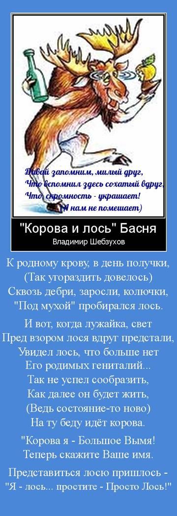 http://s7.uploads.ru/t/nQcvA.jpg