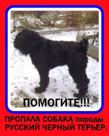 http://s7.uploads.ru/t/neFES.jpg